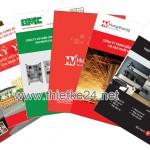 thiết kế catalog, profile chuyên nghiệp